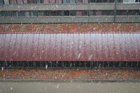 segunda gran nevadaaaa