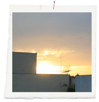 en busca del sol copia