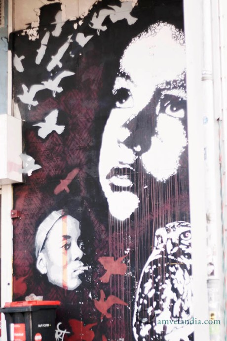 amvelandia_amsterdam_arte urbano