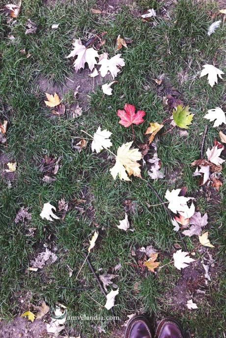 blogamvelandia_hello-autumn